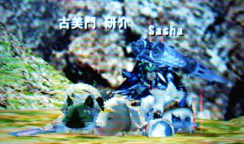 MH4H056b05.jpg