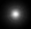 white-koram.png