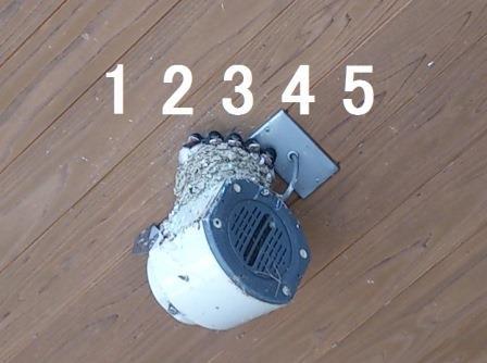 20140526-6.jpg