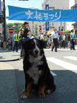 oofunamatsuri1_R.jpg