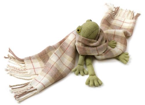 メリノタータン蛙