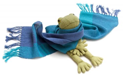 プローラ蛙