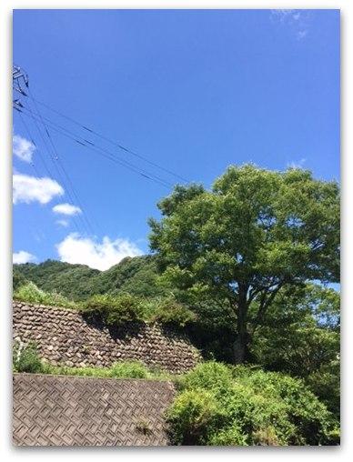 20140726-3_R.jpg