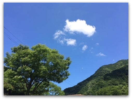 20140726-5_R.jpg