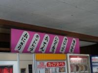 20131228雲沢ドライブイン (17)