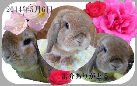 raisuke.jpg