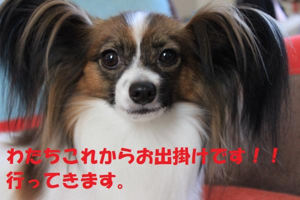 IMG_7837・・・雲convert_20140803075243
