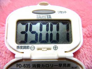 140222-261歩数計(S)