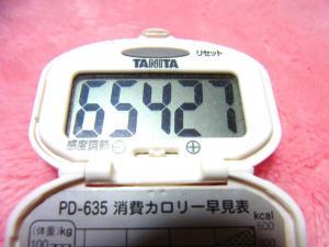 140223-251歩数計(S)