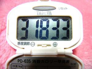 140301-261歩数計(S)