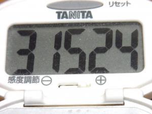 140329-251歩数計(S)