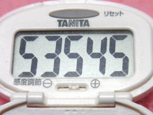 140406-241歩数計(S)