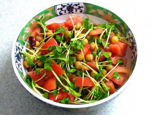 140412-221トマトとかいわれのサラダ(S)