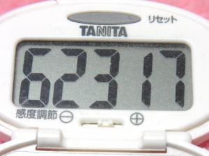 140420-251歩数計(S)