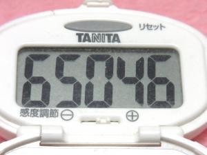 140427-251歩数計(S)