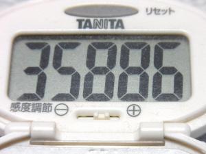 140429-251歩数計(S)