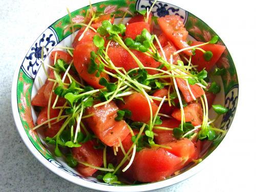 140503-231トマトとカイワレのサラダ(S)