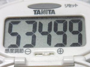 140504-211歩数計(S)