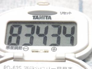140505-241歩数計(S)