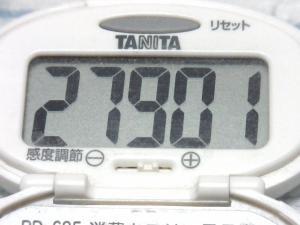 140524-251歩数計(S)