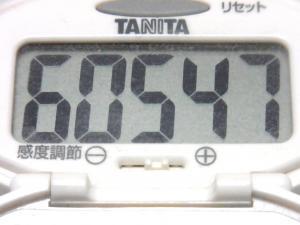 140525-251歩数計(S)