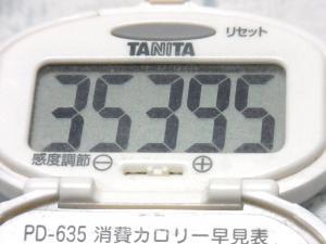 140531-261歩数計(S)