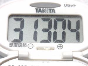 140607-271歩数計(S)