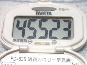 140608-241歩数計(S)