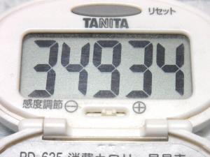 140614-241歩数計(S)