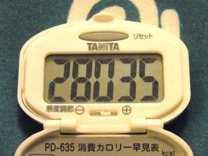 140619-023歩数計(S)