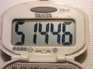 140620-227歩数計(S)
