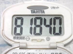 140621-118歩数計(S)