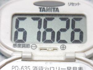 140713-261歩数計(S)