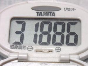 140719-261歩数計(S)
