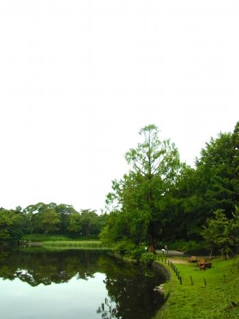 140720-201大宮公園(S)