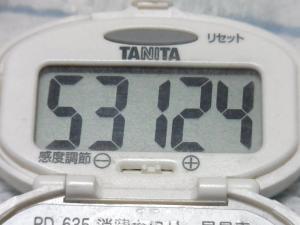 140720-251歩数計(S)