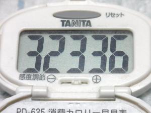 140726-241歩数計(S)