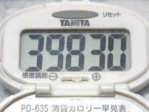 140802-241歩数計(S)