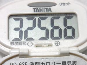 140809-251歩数計(S)
