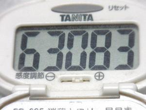 140810-241歩数計(S)