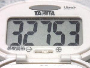 140816-241歩数計(S)