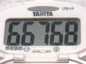 140817-241歩数計(S)