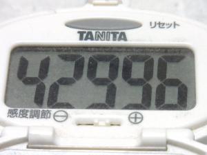 140823-230歩数計(S)