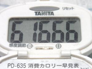 140824-261歩数計(S)