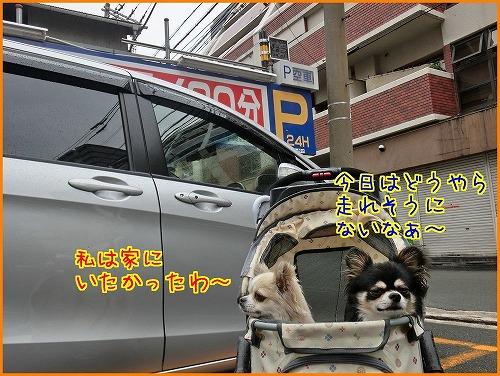 nakazaki (1)