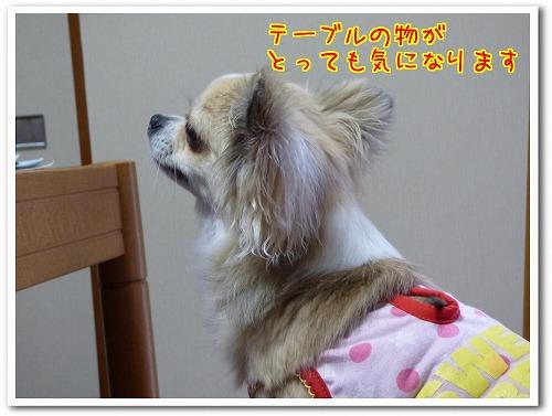 jikka8gatu (2)