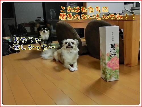 sake (2)
