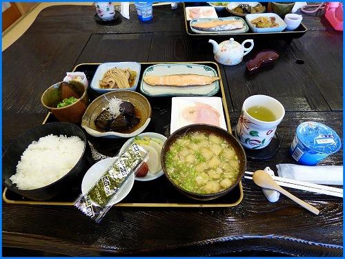 ステラ食事 (1)