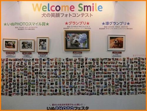 CIMG3658-20140726.jpg