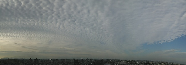 140908ウロコ雲 (4)